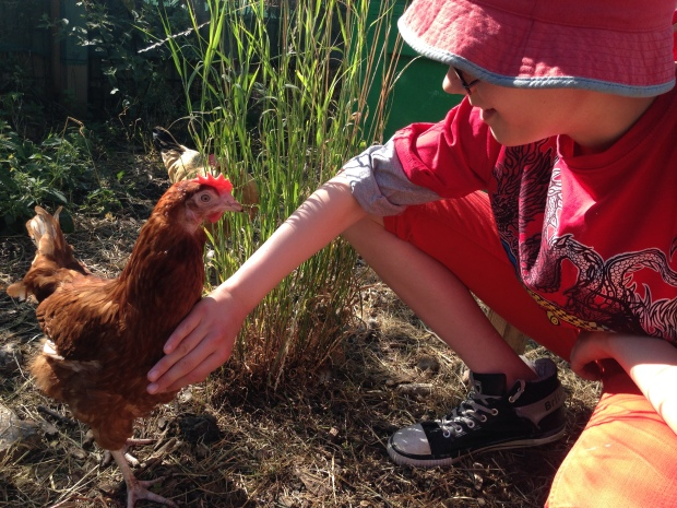 George makes sure a hen knows his legs are off-limits